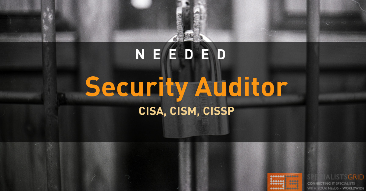 Security Auditor