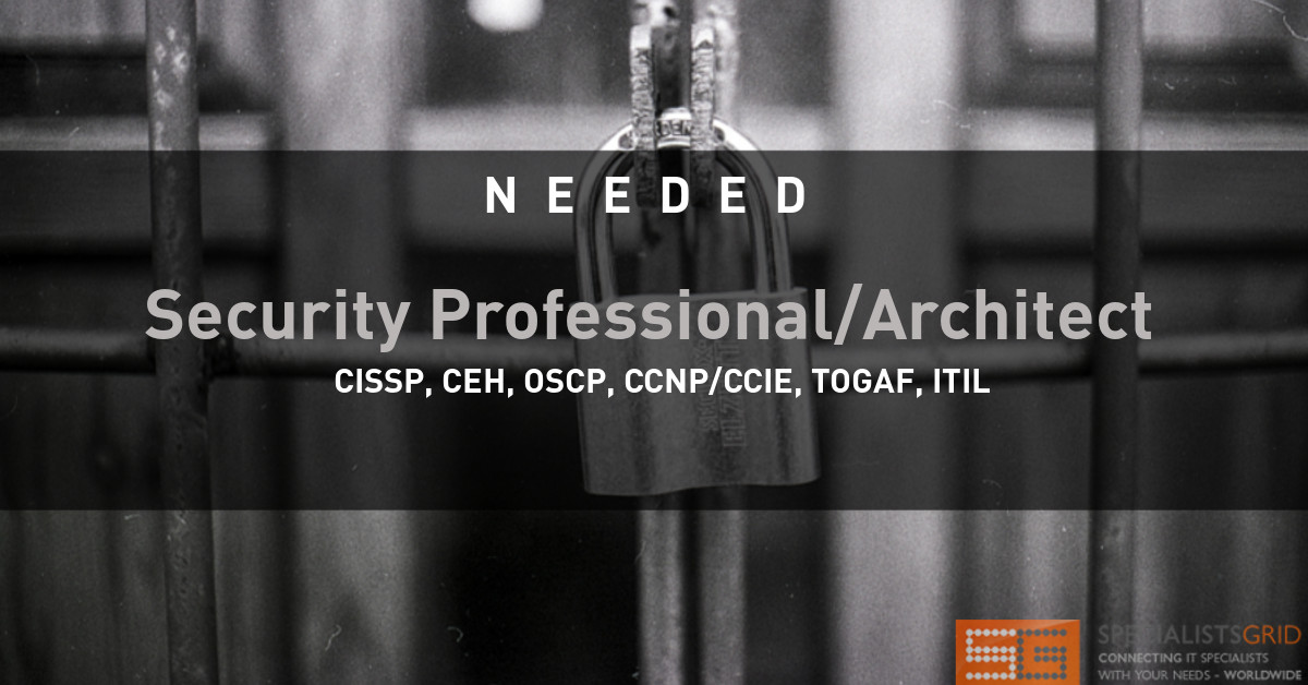 Security Professional/Architect
