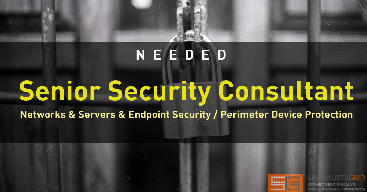 Senior Security Consultant Networks & Servers & Endpoint Security