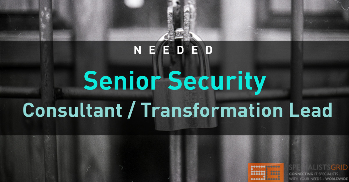 Senior Security Consultant / Transformation Lead